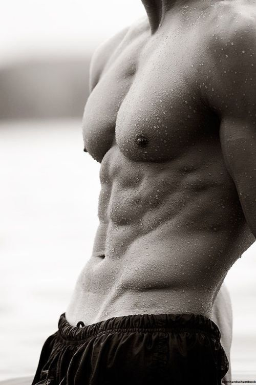 ハードな大胸筋を持つ胸板