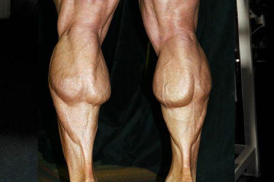 下腿三頭筋・ふくらはぎ