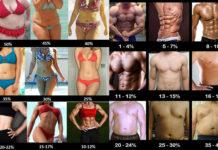 体脂肪率の変化